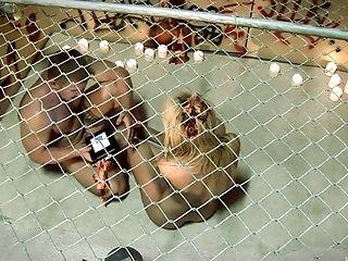 BDSM, Cage, Fetish,
