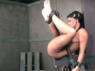 BDSM, Bold, Brunette, Clamp, Exhibitionist, Forest, Whore,